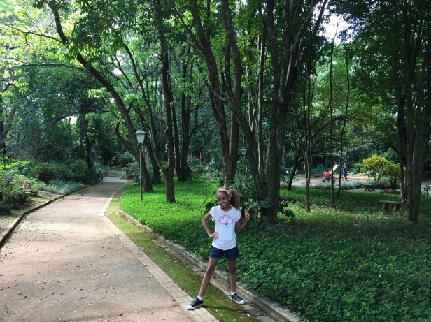 horto florestal socorro 1