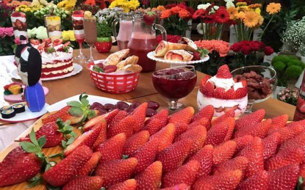 festa das flores e morangos atibaia 2020