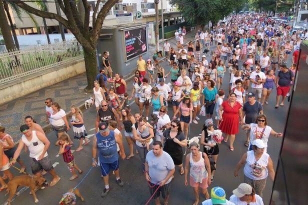 carnaval de rua para pets