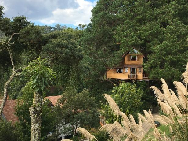 casa na árvore amantikir campos do jordão